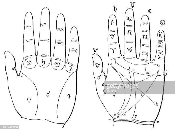 hand palm-reading palmistry chiromancy diagram - fate stock illustrations