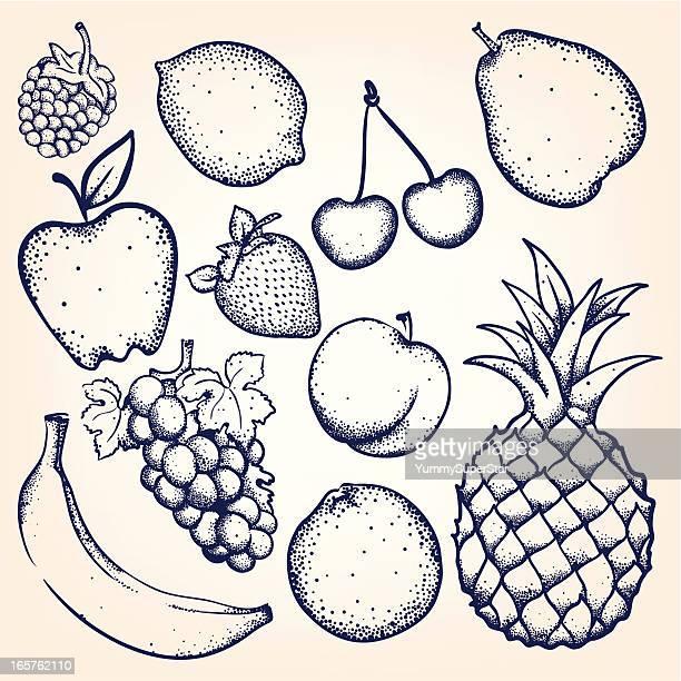 illustrations, cliparts, dessins animés et icônes de dessinés à la main fruits et baies - ananas