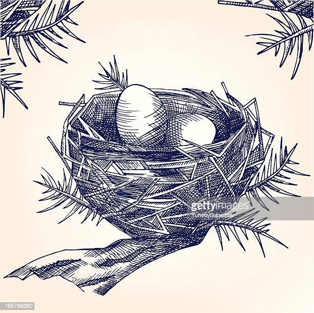 Hand-drawn nest Illustrationen