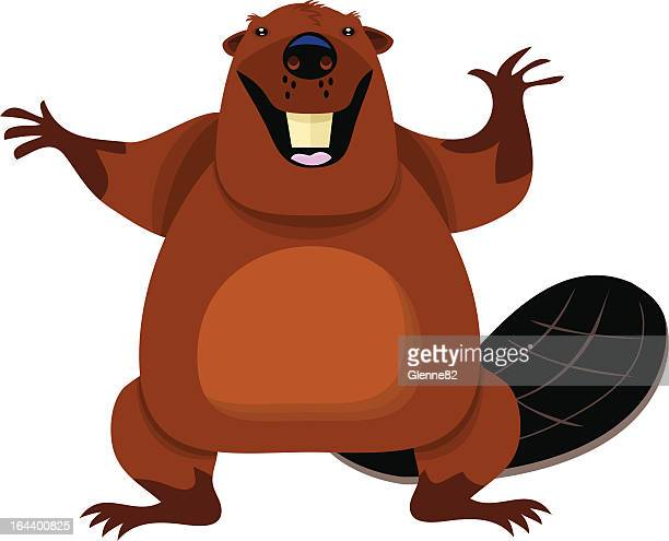 happy beaver - funny beaver stock illustrations