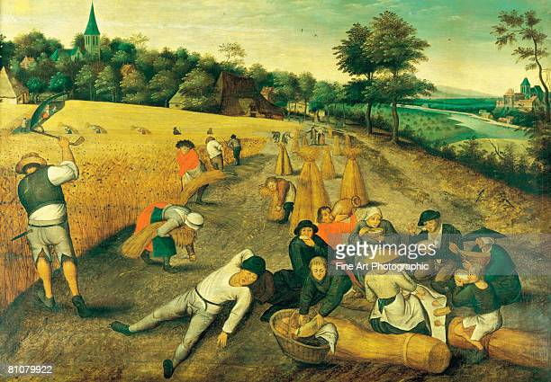 harvest time - large group of people stock illustrations