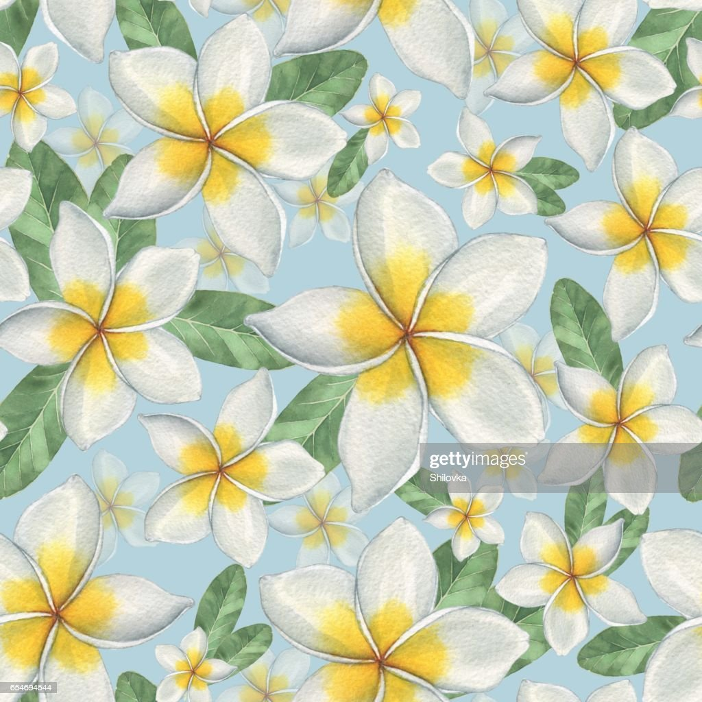 Hawaiian flowers 6 stock illustration getty images hawaiian flowers 6 izmirmasajfo