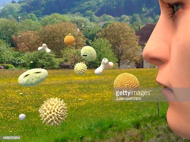 Hay fever, artwork