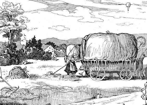Hay wagon and a woman preparing the hay, village in the distance