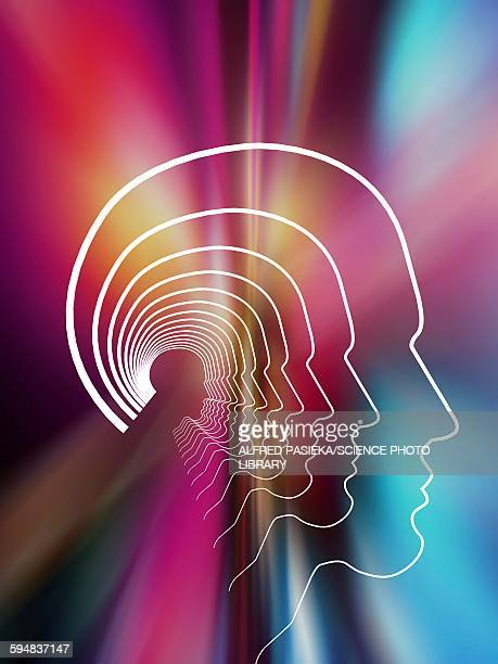 Head contour lines, abstract background