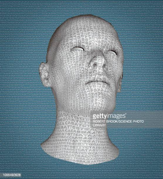 head engraved with dna, illustration - the alphabet stock illustrations