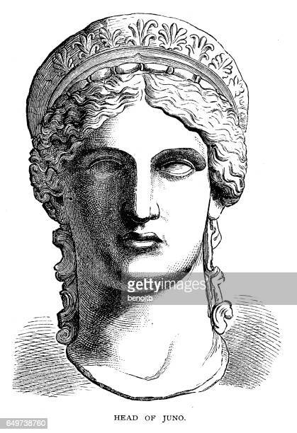 head of juno - greek mythology stock illustrations
