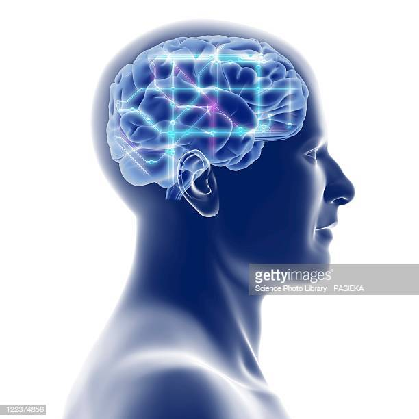 head with brain and network diagram - human head stock illustrations