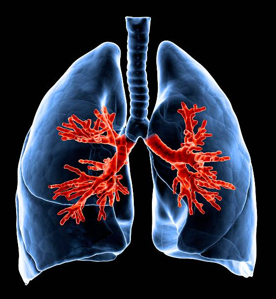 Healthy Lungs, Artwork Wall Art