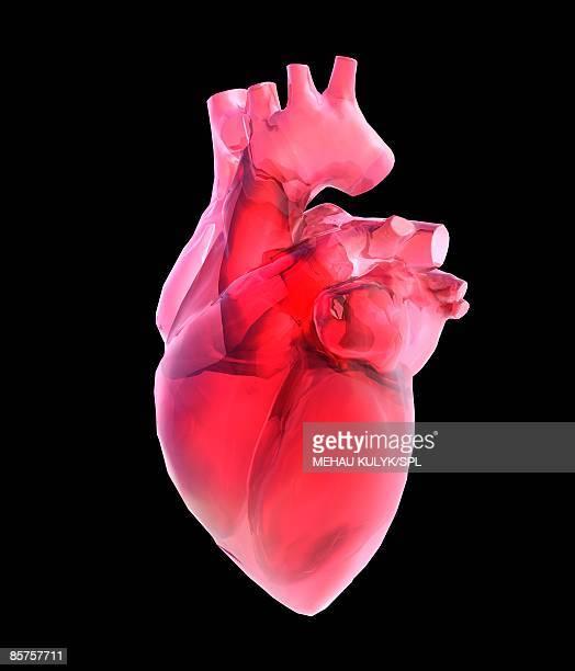 Heart of glass against black background