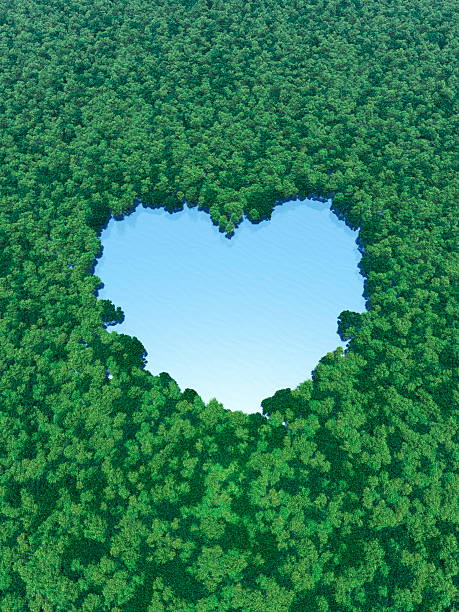 Heart Shaped Lake In Forest Wall Art