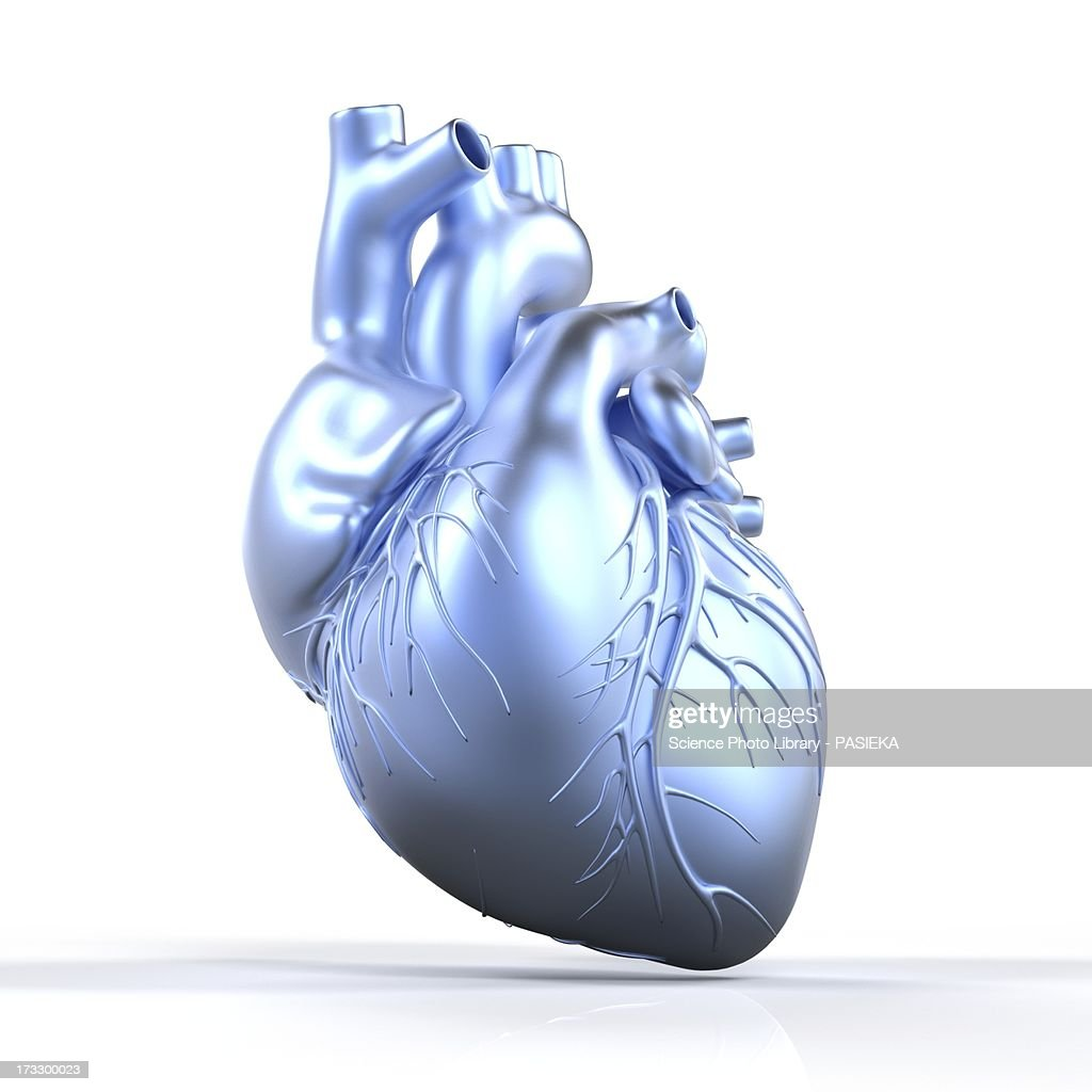 Heart with coronary vessels, artwork : Stock Illustration