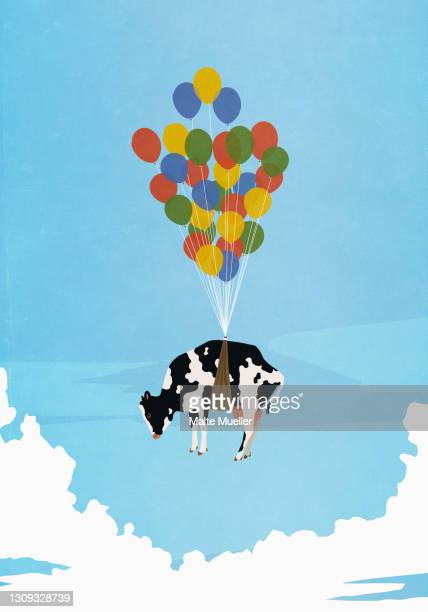 helium balloon bunch lifting cow in sky - full length stock illustrations