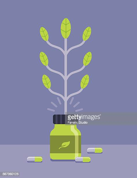 herbal and nutritional capsule for healthy living concept - natural condition stock illustrations, clip art, cartoons, & icons