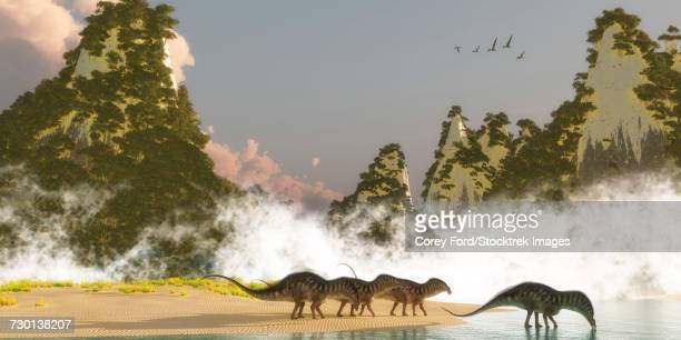 A herd of Amargasaurus dinosaurs drink water from a lake.
