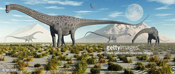 A herd of Diplodocus sauropod dinosaurs during Earths Jurassic period.