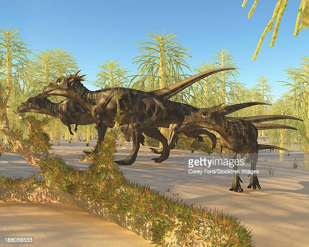 A herd of Dracorex dinosaurs walk through a carboniferous forest in the Cretaceous Era.