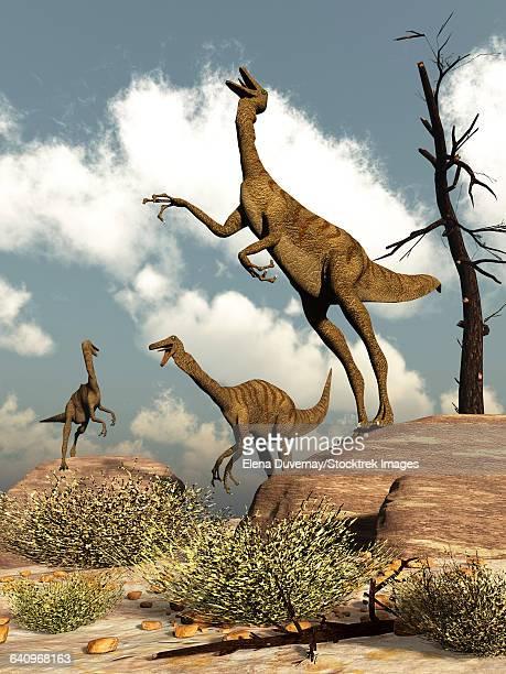 ilustraciones, imágenes clip art, dibujos animados e iconos de stock de herd of gallimimus dinosaurs in the desert. - paleozoología
