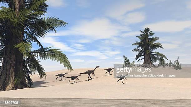 Herd of Gigantoraptors walking along the shore.
