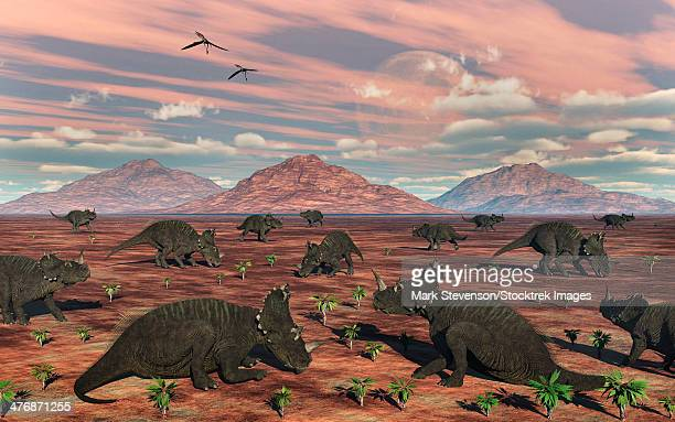 ilustraciones, imágenes clip art, dibujos animados e iconos de stock de a herd of herbivorous centrosaurus dinosaurs. - grupo grande de animales