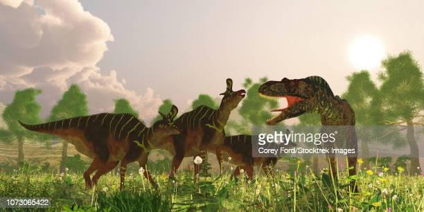 A herd of Lambeosaurus dinosaurs is confronted by a predatory Albertosaurus.