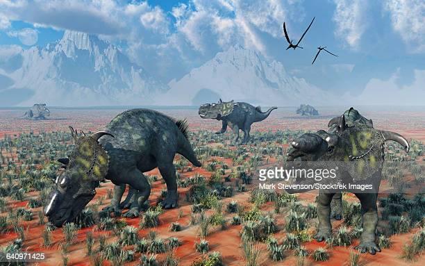ilustraciones, imágenes clip art, dibujos animados e iconos de stock de a herd of pachyrhinosaurus dinosaurs. - paleozoología