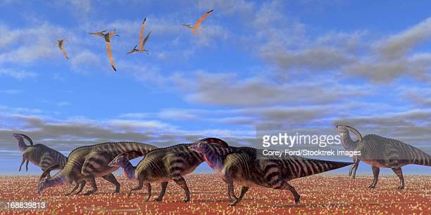 A herd of Parasaurolophus dinosaurs migrate through a desert searching for better vegetation.