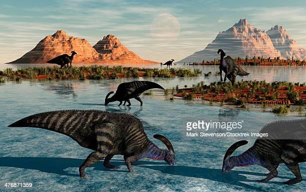 A herd of Parasaurolophus duckbill dinosaurs grazing on Cretaceous feeding ground.