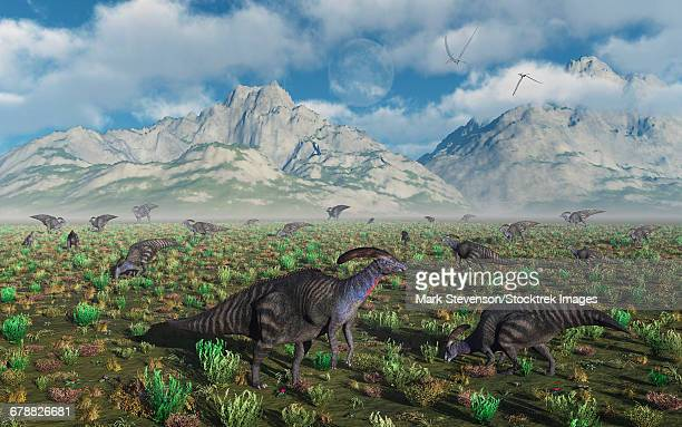 A herd of Parasaurolophus duckbill dinosaurs.