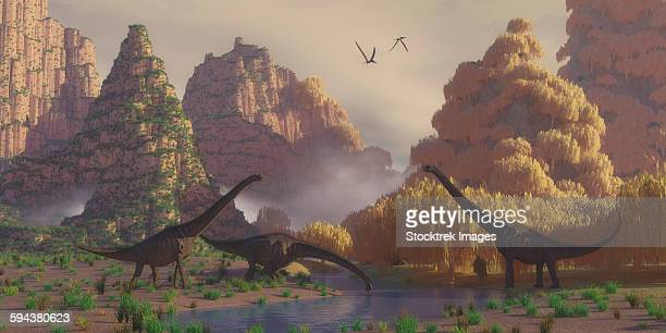 A herd of Sauroposeidon dinosaurs stop at a river to drink as Pterodactylus reptiles fly over.