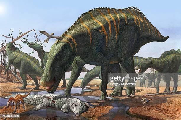 a herd of shantungosaurus dinosaurs scavenging for food. - animal body stock illustrations, clip art, cartoons, & icons