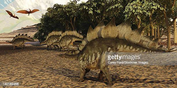 A herd of Stegosaurus walk down a muddy riverbed in search of food while two Pterosaurs fly over them.