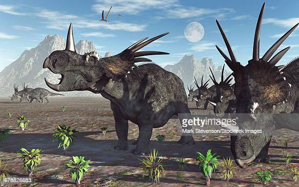 A herd of Styracosaurus dinosaurs during Earths Cretaceous period.