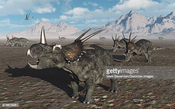 ilustraciones, imágenes clip art, dibujos animados e iconos de stock de a herd of styracosaurus dinosaurs during earths cretaceous period. - paleozoología