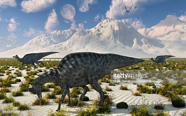 a herd of velafrons hadrosaurid dinosaurs during the cretaceous period. - hadrosaurid stock illustrations, clip art, cartoons, & icons