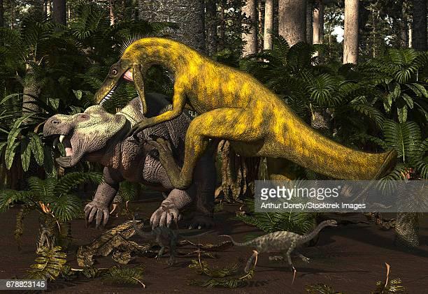 Herrerasaurus, an early dinosaur, attacks a dicynodont.