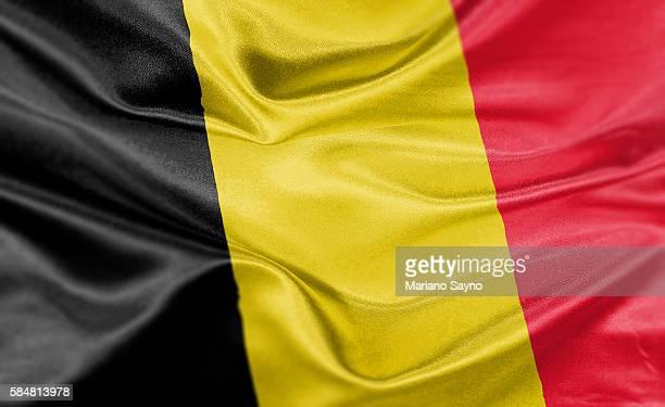 high resolution digital render of albania flag - belgium stock illustrations