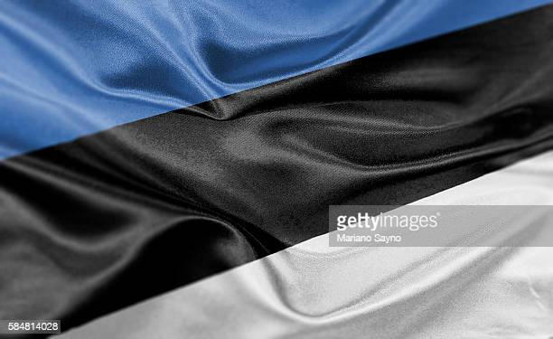 high resolution digital render of estonia flag - estonia stock illustrations