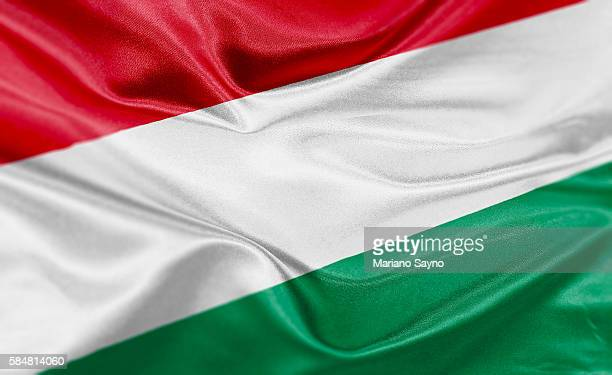 high resolution digital render of hungary flag - hungary stock-grafiken, -clipart, -cartoons und -symbole