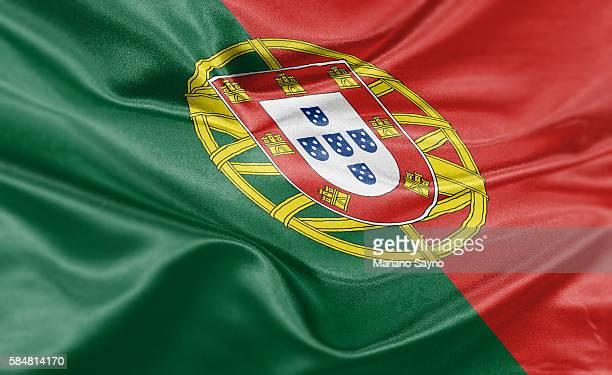 ilustraciones, imágenes clip art, dibujos animados e iconos de stock de high resolution digital render of portugal flag - independence