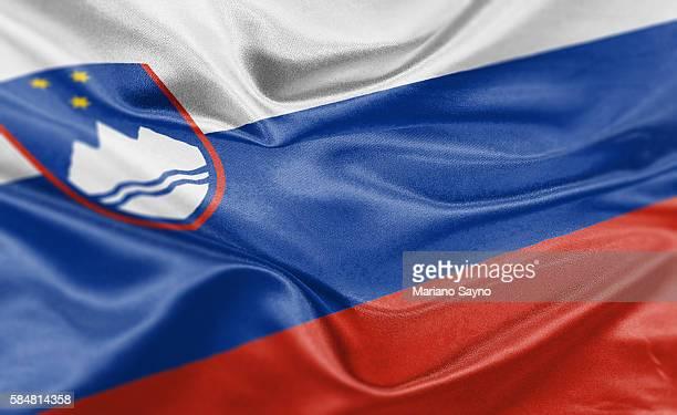 high resolution digital render of slovenia flag - slovenia stock illustrations