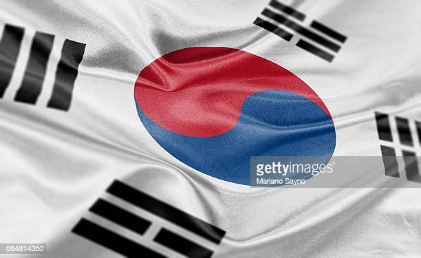 high resolution digital render of south korea flag - south korea stock illustrations, clip art, cartoons, & icons