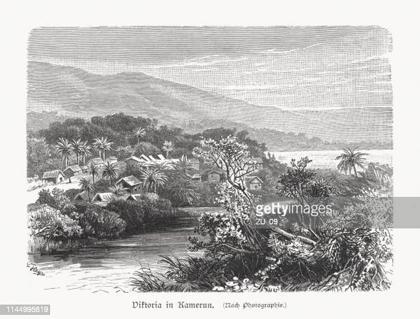 historical view of limbe (formerly victoria), cameroon, woodcut, published 1897 - cameroon stock illustrations, clip art, cartoons, & icons