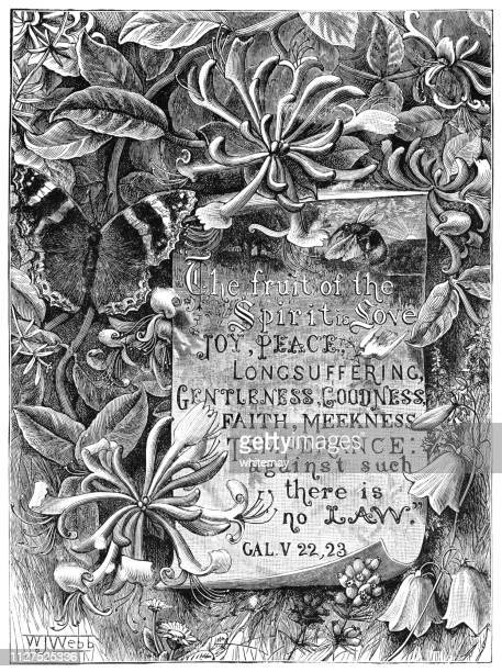 honeysuckle frame with quotation from the book of galatians, new testament - arrowwood stock illustrations, clip art, cartoons, & icons