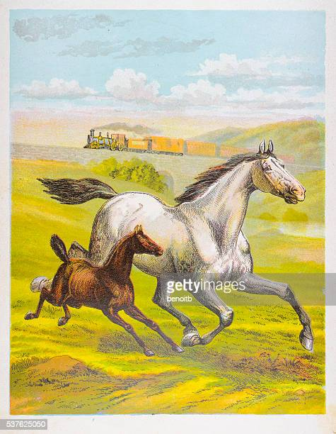 horse and her foal galloping - mare stock illustrations, clip art, cartoons, & icons