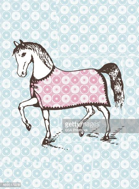 horse - blanket stock illustrations, clip art, cartoons, & icons