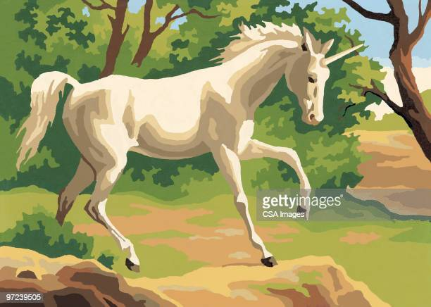 horse - unicorn stock illustrations