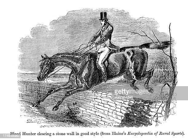 stockillustraties, clipart, cartoons en iconen met horse rider - military