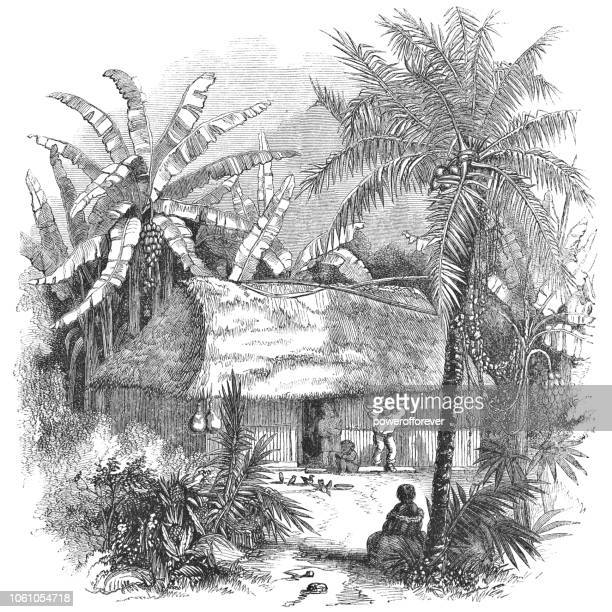House in the Wilderness of Costa Rica (19th Century)