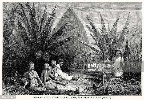 house of a native cief, new caledonia - new caledonia stock illustrations